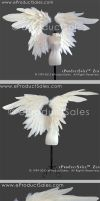 eProductSales White ZEN BJD Angel Wings accessory by eProductSales