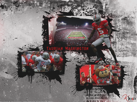 Taurian Washington Wallpaper by KevinsGraphics