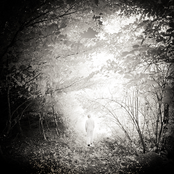 Ghost by sorny