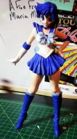 Sailor Mercury Model by PaulineFrench
