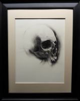 Skull2012 : Framed by centralunrest