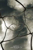 Wire sculpture in Barcelona by kil1k
