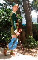 Fado the Wind Sage Cosplay by Windnstorm