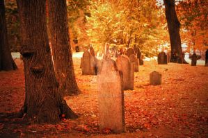 Central Burying Ground by GrimFay