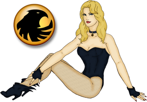 DC Pinup - Black Canary by Ladymalk