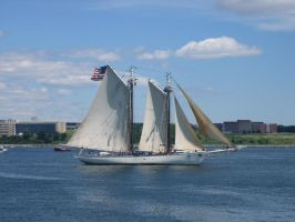 Tall Ship - Spirit of Mass. by Aeltari