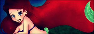 Cover Photo: Ariel by Mickey-Spectrum