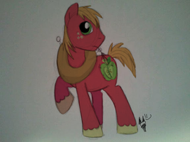 Big Mac by FrostheartIsSiamese