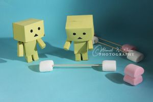 Danbo - the heavyweight champ by ahmedwkhan