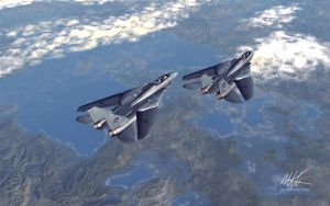 Tomcats by maxq3d