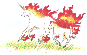 Pokemon rapidash by PinkMelodii