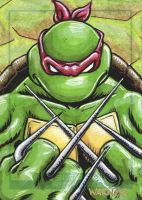 Raphael sketch card by JLWarner