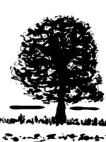 20130920 Trees by SketchDailyChallenge