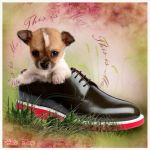 Shoes (2012) by Holi--Day