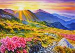 Rhododendron mountainscape by veracauwenberghs