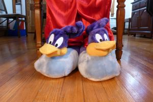 Road Runner slippers, front by ExileLink