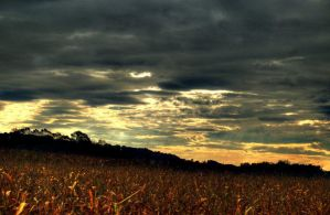 country landscape 29 by glad2626