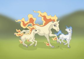 Rapidash Family . by MySweetQueen