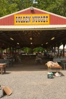 goLden nuGGet fLea marKet by mudyfrog