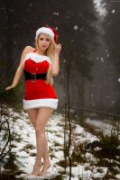 Santa Claus' little sister 2 by gb62da