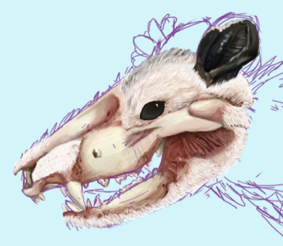 W.I.P. Undead Opossum by gearsGlorified