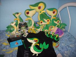 Snivy Collection by Lokibelle