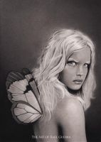 FAIRY by chicourano