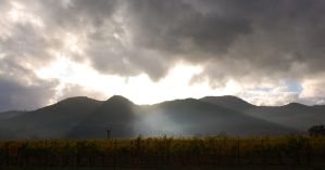 Napa Valley Sunset by rebekahlynn-photo