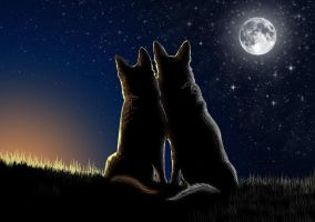 Love in the full moon by Maranez