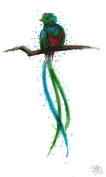 Quetzal 1, Finished and lightened by AshleyDay44