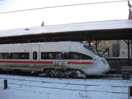 ice train in Copenhagen by NSLC