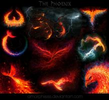 My phoenix collection by amorphisss
