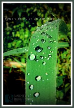 Stuck With You on the dew drops by Simplethingstudio