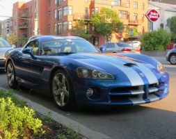 Dodge Viper RT/10 by Kitteh-Pawz