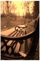 Park Bench.. by NosferatusaL