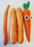 Carrot by michelledrewapicture