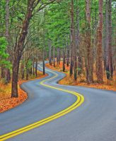 Texas Park Road 16 by labba1