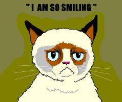 Smiling Grumpy Cat by AVRICCI