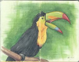 Moleskine Page 8 - Toucan by otohime0394