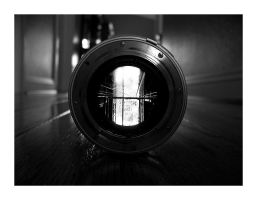 Life Through A Lens by powerpointer