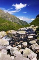 Stream In Tatra Mountains 2 by CitizenFresh