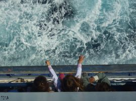 GOING TO GOZO by isabelle13280