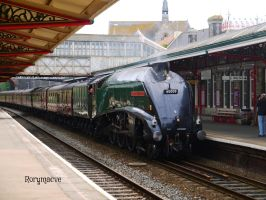 LNER 60009 'Union of South Africa' at Teignmouth by The-Transport-Guild