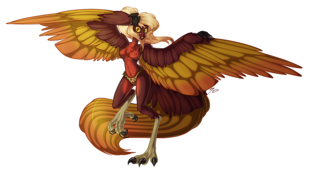 Harpy by Ruaniamh