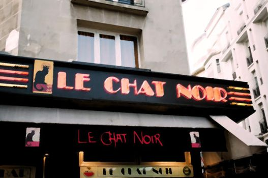 Le Chat Noir Revamped by Film22193