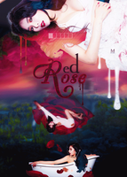 Red Rose by MiHVVN