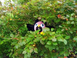 a hoot in the blueberry bushes by Jadetiger