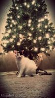 .:Merry christmas from Cleo:. by Mugsh0t