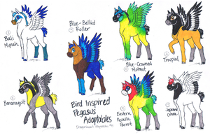 Dragonheart Adoptables: 5 by Dragonheart-Stables