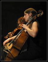 Cello fame by rhipster